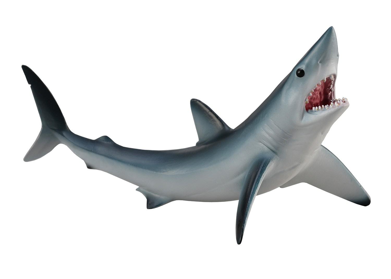 что картинки с изображением акулы фронте стал снайпером